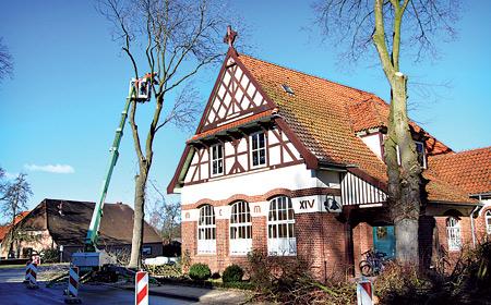 Die Bäume am Husumer Gemeindehauses wurden aus Sicherheitsgründen  gefällt