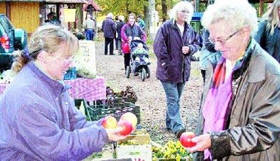 Nicht nur die rotbackigen, knackigen Äpfel im herbstlichen Früchte-Angebot führten so manche Besucherin in Versuchung. Foto: Angheloff