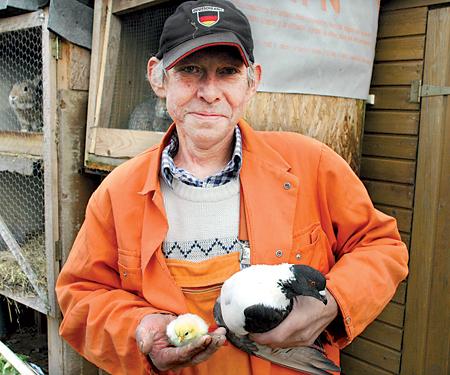 Werner Hildebrandt (54) aus Bolsehle mit dem Hühnerküken und der Taube, die das Hühnerei ausbrütete. Fotos: Hildebrandt