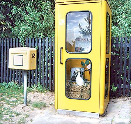 Besondere Telefonzelle